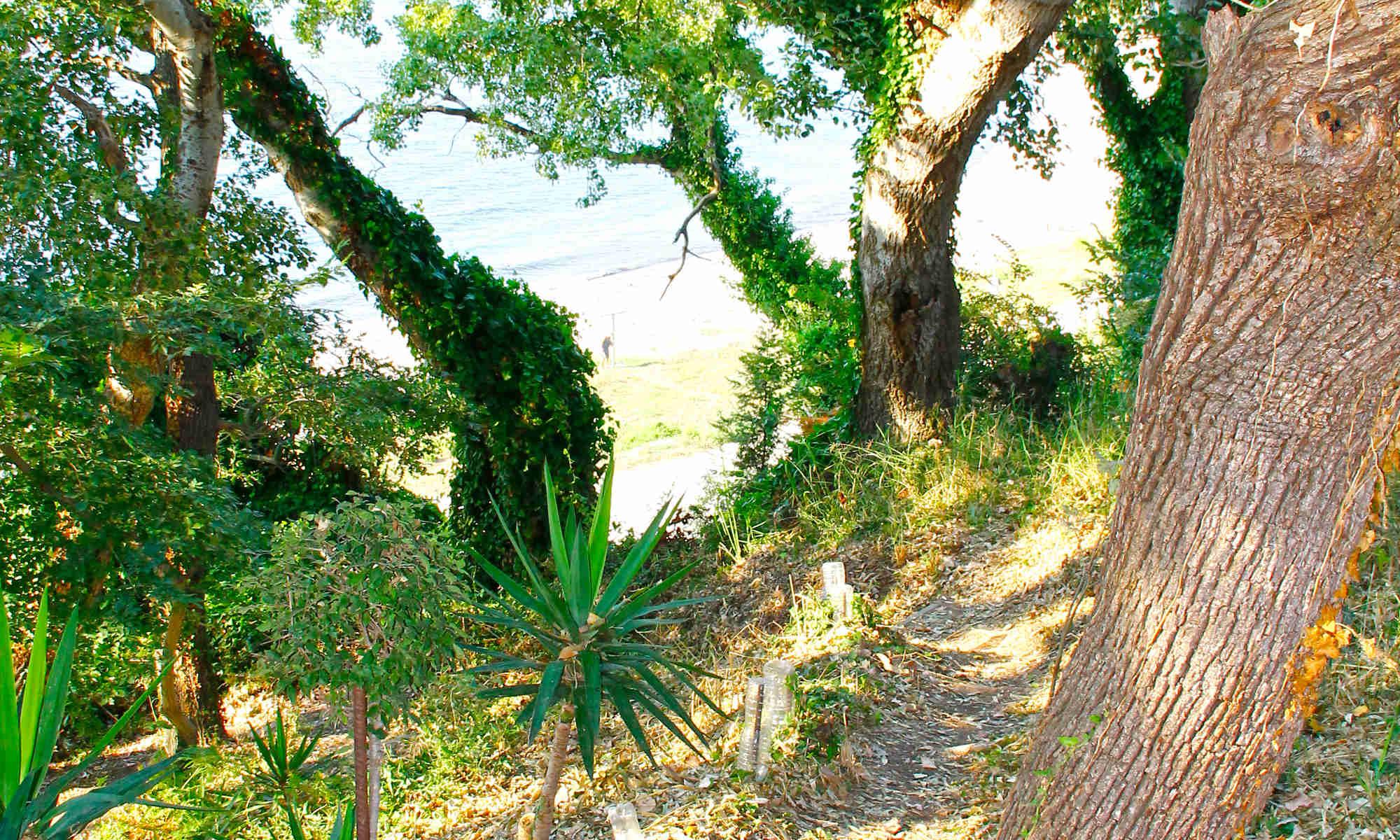 Τα σκαλάκια... από τον παράδεισο του κήπου μας στο απέραντο γαλάζιο του Ιονίου! - http://anixipreveza.gr